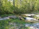 43 Bluff Woods - Photo 6