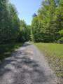 43 Bluff Woods - Photo 7