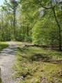 43 Bluff Woods - Photo 8