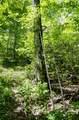 1121 Deer Ridge Road - Photo 40