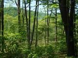 0 Highland Mountain Rd - Photo 3