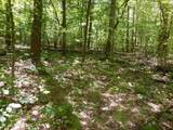 0 Highland Mountain Rd - Photo 7