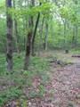 0 Deep Woods Rd - Photo 13