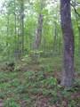 0 Deep Woods Rd - Photo 14
