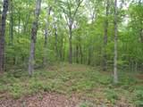 0 Deep Woods Rd - Photo 3