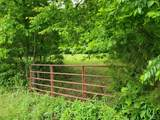 0 Young Hollow Road - Photo 1