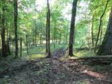 0 Young Hollow Road - Photo 17