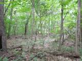 7 .70 Ac.Star Point Road - Photo 1
