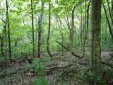 7 .70 Ac.Star Point Road - Photo 4