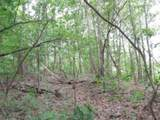 7 .70 Ac.Star Point Road - Photo 8