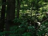 0 Dogwood Circle - Photo 7