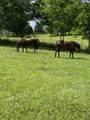 0 Deer Ridge Road - Photo 7