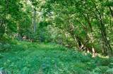 0 Shoal Creek Rd. - Photo 4