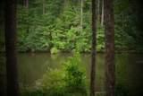 177 Lake Louisa Loop - Photo 29