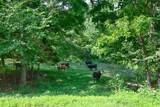 1 Shoal Creek Rd - Photo 5