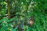 1 Shoal Creek Rd - Photo 7