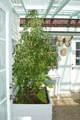 1065 N Corinth Rd - Photo 37