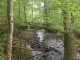 0 Brush Creek Rd - Photo 3