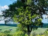 1783 Riverhaven Dr - Photo 31