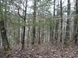 5 Backwoods Trails Lane - Photo 1