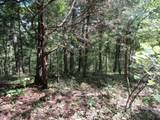5 .015Ac  Backwoods Trails - Photo 1