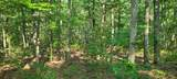 328 Timberwood Trce Lot 328 - Photo 12