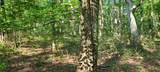 328 Timberwood Trce Lot 328 - Photo 29