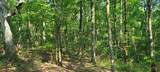 328 Timberwood Trce Lot 328 - Photo 31