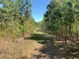 0 Lick Creek Road - Photo 1