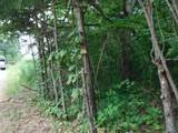 16 .27Ac Hanging Limb Hwy - Photo 17