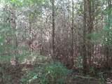 104 Brush Creek Rd - Photo 4