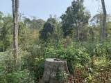 1399 Mcclurkan Rd - Photo 30