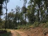 1399 Mcclurkan Rd - Photo 38