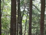 0 Richland Ridge - Photo 4