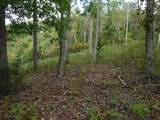 1 .54Ac Mitchell Creek Pt - Photo 1