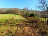 19 .45Ac Bear Hollow Ln - Photo 2