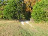 20 Turkey Creek Boat Dk Rd - Photo 4