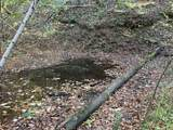 0 Bear Hollow Road - Photo 21