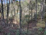 0 Bear Hollow Road - Photo 5