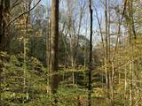 0 Bear Hollow Road - Photo 7