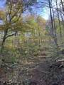 0 Bear Hollow Road - Photo 9