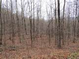 222 .42Ac Holden Hollow Rd - Photo 1