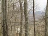 0 .23Ac Turkey Creek Hwy - Photo 13