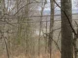 0 .23Ac Turkey Creek Hwy - Photo 4