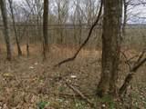 0 .23Ac Turkey Creek Hwy - Photo 8