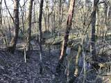 0 Fort Blount Rd - Photo 8