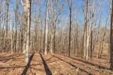 5676 Bending Chestnut Rd - Photo 11