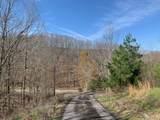 252 Goodman Branch Rd - Photo 41