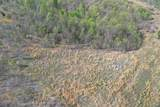 0 Shores Trail - Photo 8