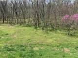 1039 Massey Hollow Ln - Photo 15